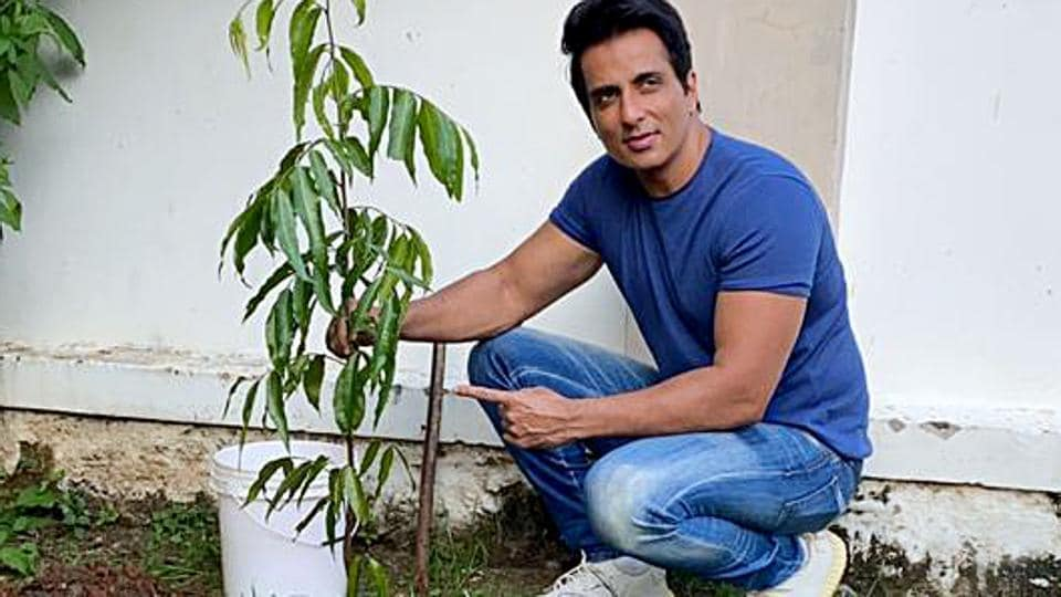 Actor Sonu Sood accepted a Green India Challenge and planted saplings at Ramoji Film City.