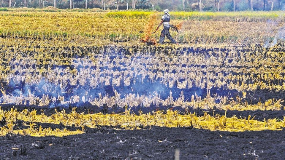 Bharati Kisan Union (Lakhowal) has said that they would be forced to burn stubble if the government failed to compensate them.