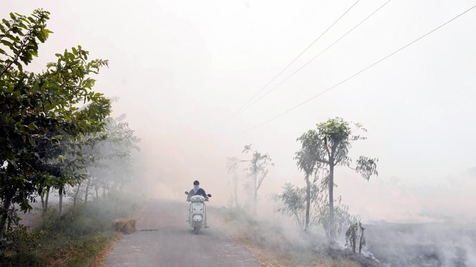 Stubble being burnt along the sides of a road on the outskirts of Amritsar earlier this week.