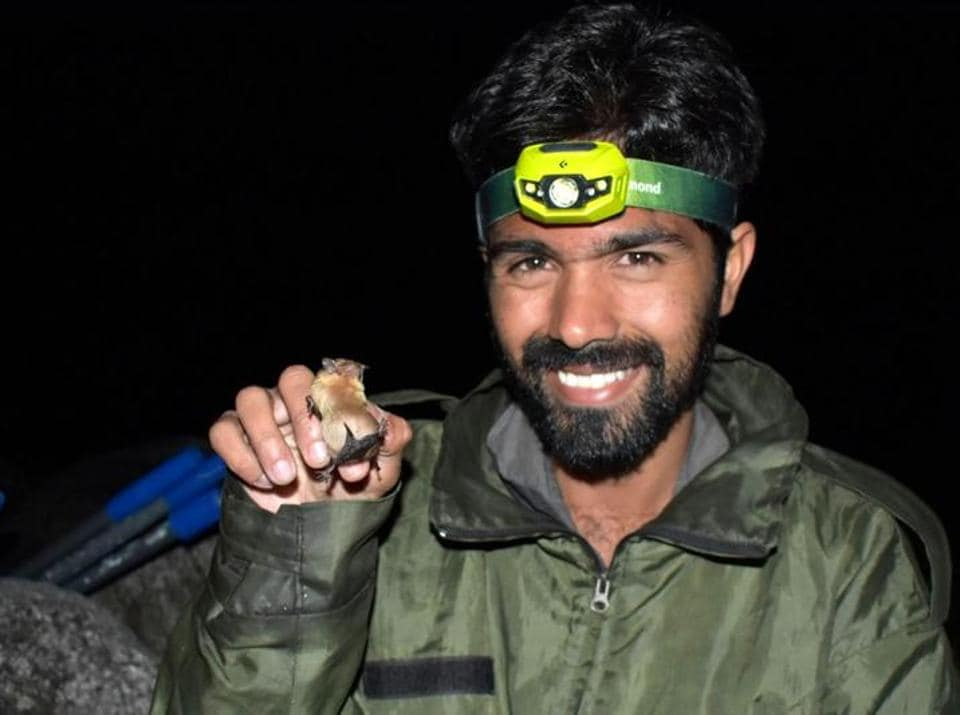 Rohit Chakravarty with a Joffre's Pipistrelle bat. 'As a researcher, I just want to de-stigmatise this animal that people have such an aversion to and have so many misconceptions about,' the 29-year-old chiropterologist says.