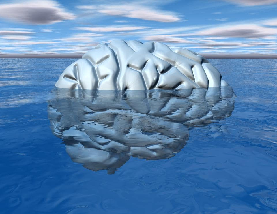 The mind has its conscious and subconscious aspects.