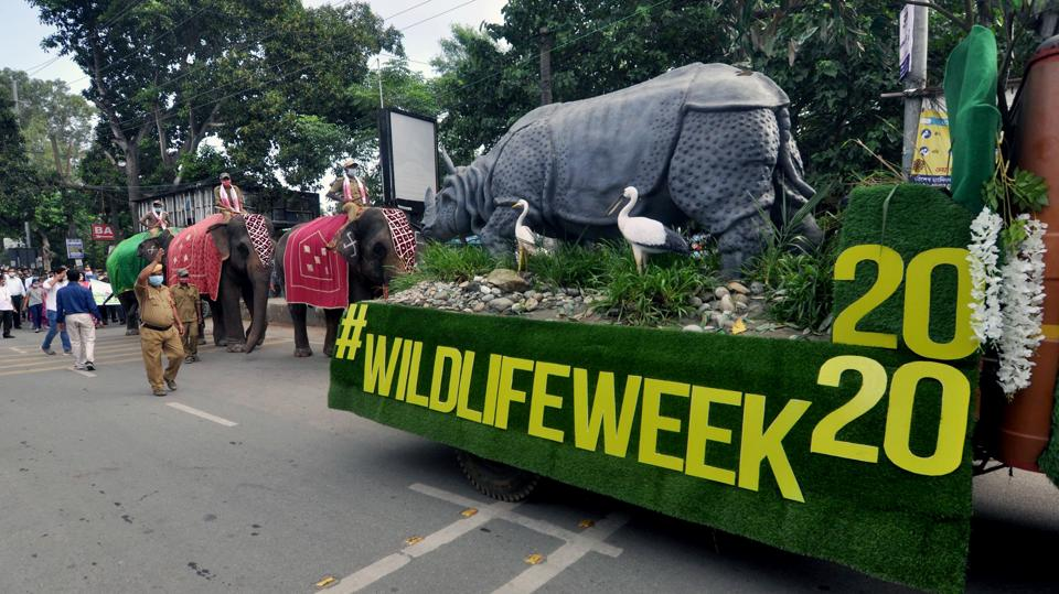 Assam state zoo begins celebrations of 66th Wildlife Week 2020 in Guwahati on October 1.