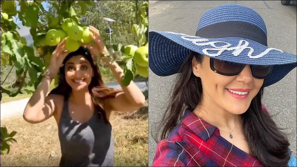 'Apple farmer' Preity Zinta offers Shilpa Shetty a new job after this video from Manali