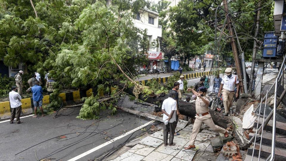 People watch as police personnel make their way around a tree that fell on a street following heavy rains in Hyderabad on October 14. At least 20 people have died across Telangana due to rain related incidents. (Noah Saleem / AFP)