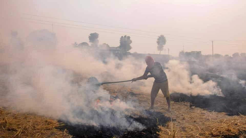 Supreme Court constitutes one-member committee to monitor farm fires in Punjab, Haryana and Uttar Pradesh... - Hindustan Times