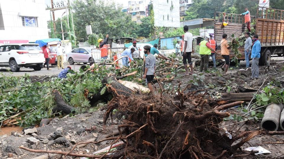 Torrential rainfall on Wednesday wreaked havoc across Pune as seen at Mhalsakant chowk in Akurdi where a tree fell and damaged cables.