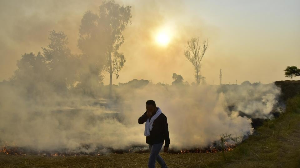 At its peak, stubble burning accounts for almost half of Delhi's pollution. Last year, this was 44% on October 31.