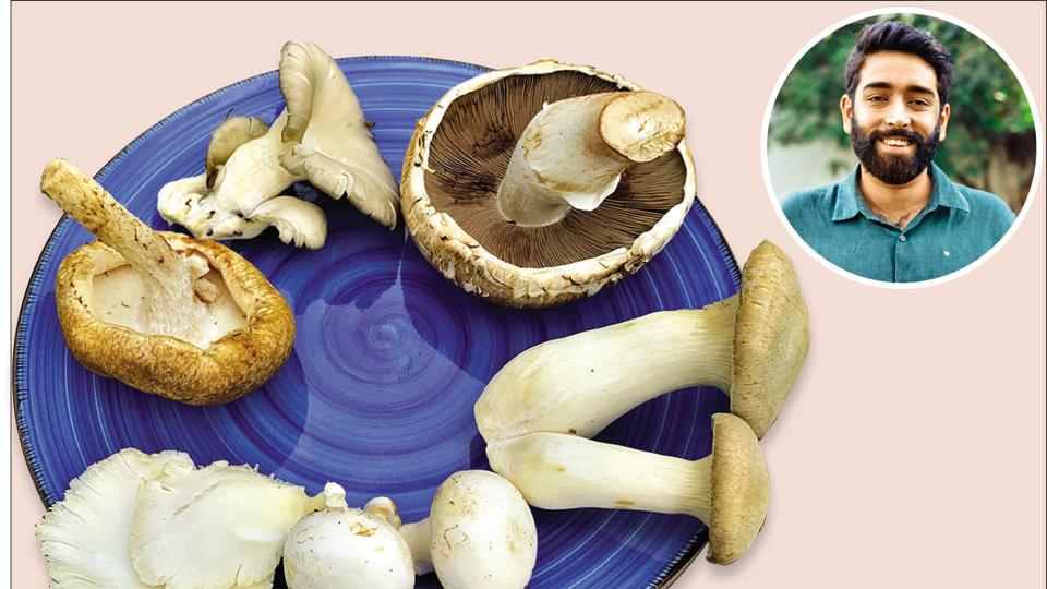 Achintya Anand (inset), a former chef who now runs Krishi Cress, an urban farm in Chattarpur, is passionate about mushrooms