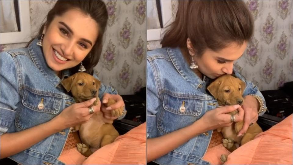 Tara Sutaria and puppy adds dollops of cuteness with their awwwdorable chemistry