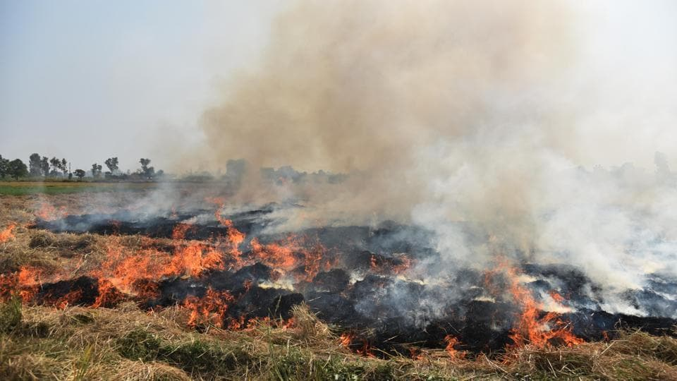 Contribution of stubble fires to  PM2.5 pollution is likely to rise  on Monday and Tuesday.