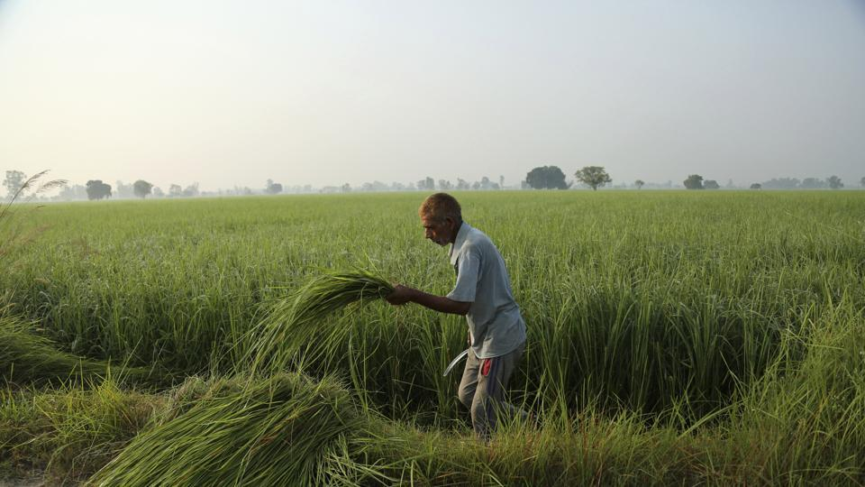 Three out of four bills passed by the Congress-led Punjab government on October 20 to negate contentious central legislations on how farmers do business are unlikely to invalidate the laws already passed by Parliament