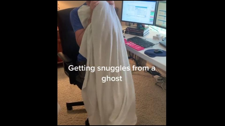 The image shows a doggo dressed as a ghost.