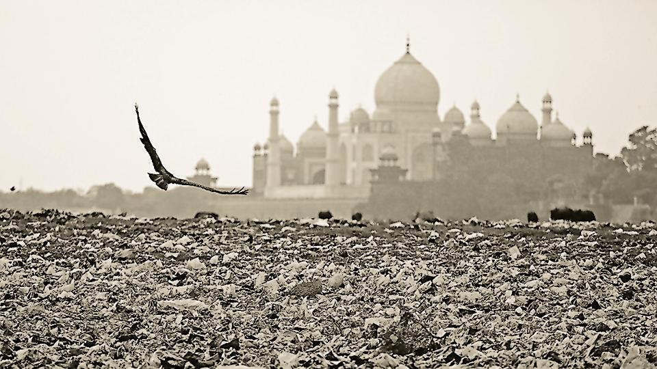 Increased pollution levels at Agra have compromised the Taj Mahal's visibility
