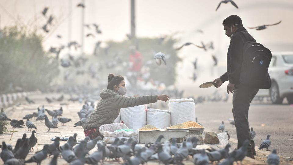 Pigeons gather as a man buys bird feed on a smoggy day at Burari in New Delhi on November 15. There has been a continuous decline in average daily new cases for the past five weeks; from around 73,000 new Covid-19 cases being reported in the beginning of October to the current figure of around 49,000, the ministry shared on Twitter. (Sanchit Khanna / HT Photo)