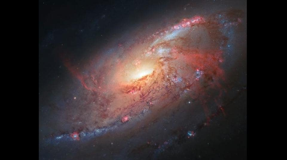 Galaxy M106 has a rather unusual set of spiral arms. Check it out