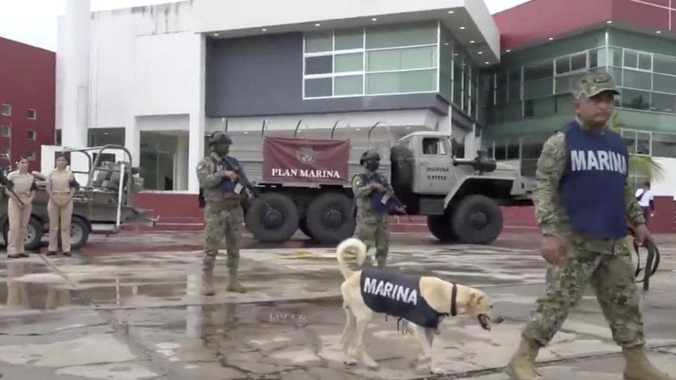 The image shows the canine dressed in the official uniform.