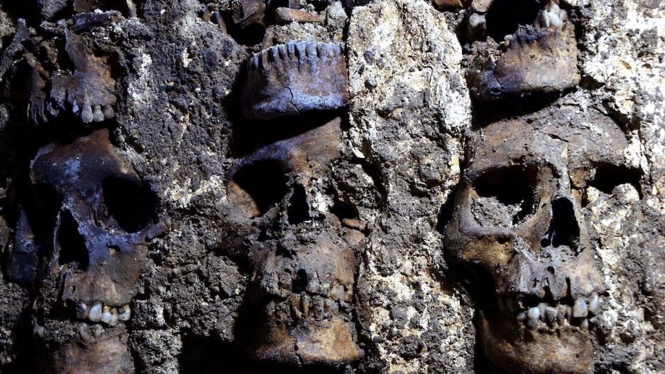 Building of life rather than death: Mexico 'tower of skulls' yields more ancient remains