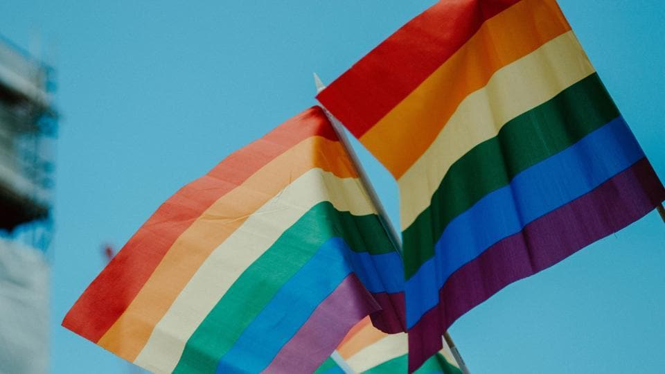 Lithuania set to legalise gay civil partnerships next year, says LGBT+ lawmaker
