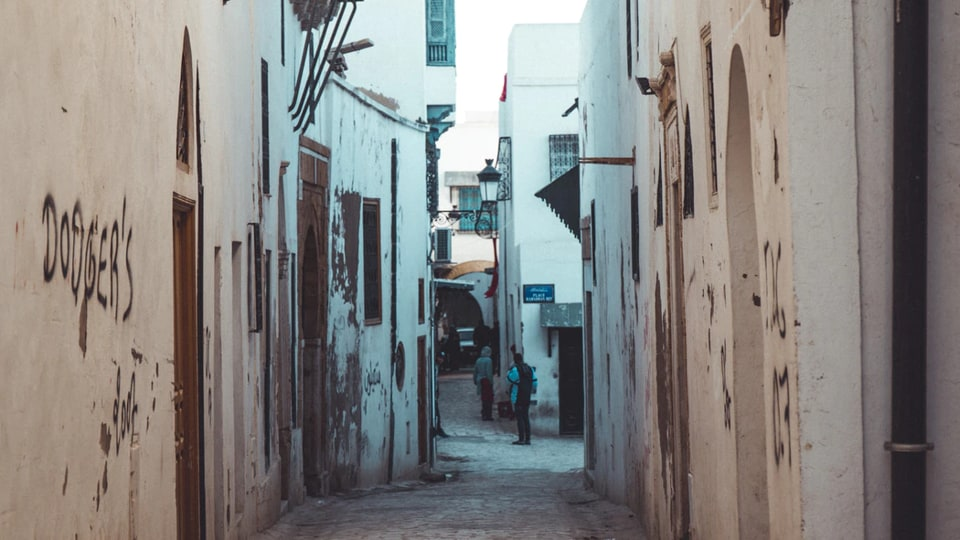 Pandemic drives down Tunisia's tourism revenue by 65%