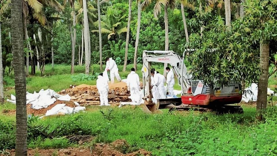 Animal husbandry department workers cull ducks following detection of avian influenza, at a place in Kottayam district of Kerala, on January 6.
