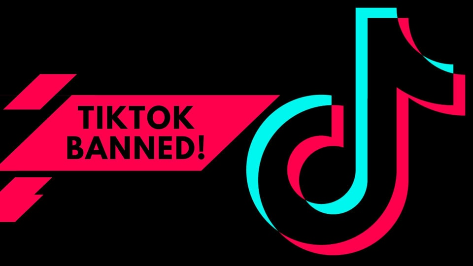 TikTok stops working for users in India after govt bans the app