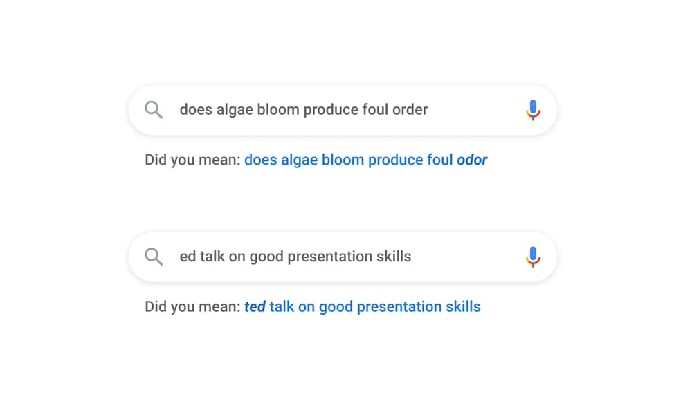 Learning how to spell right with Google
