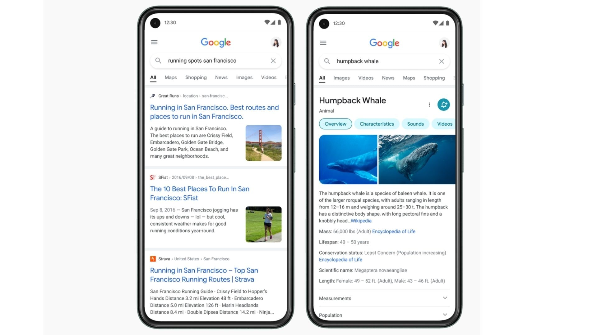 The new Google Search update