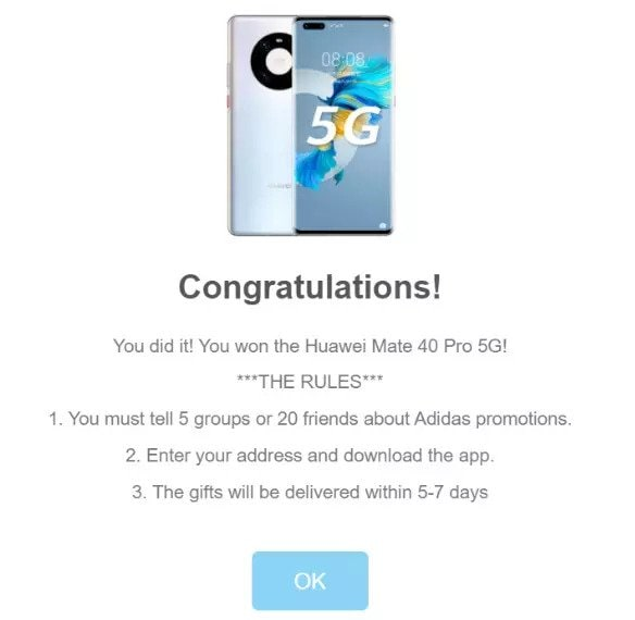 The landing page on the website informs every user who participates that they have won.
