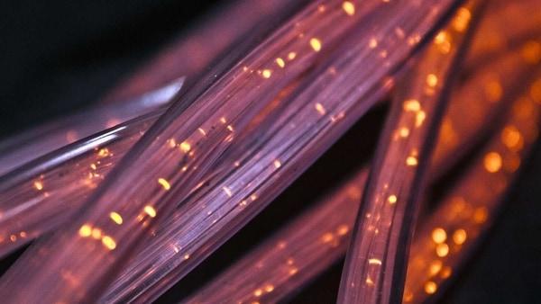 Excitel broadband plans